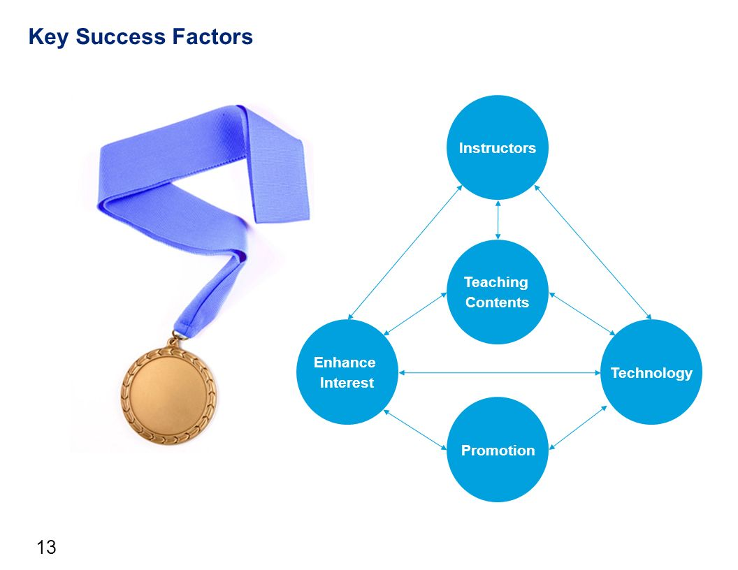 the factors of a successful education Individual and school factors affecting students' participation and success in  higher education authors authors and affiliations boaz shulruf email author.