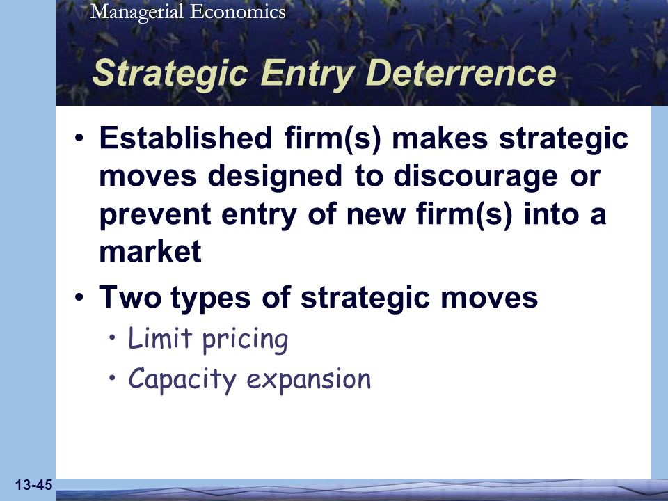Strategic Entry Deterrence