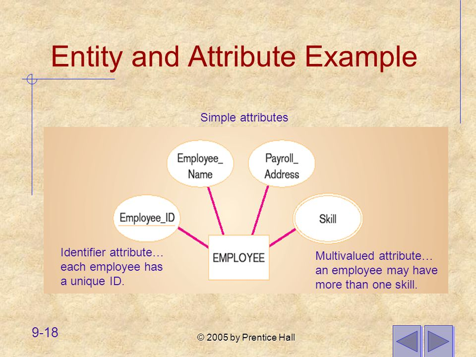 Entity and Attribute Example