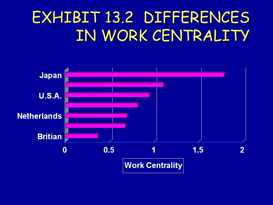 EXHIBIT 13.2 DIFFERENCES IN WORK CENTRALITY