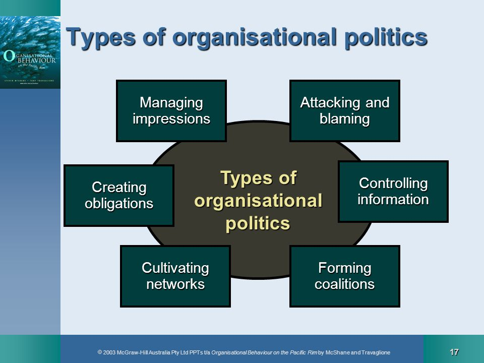 Types of organisational politics