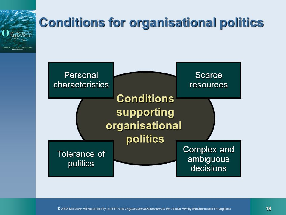 Conditions for organisational politics