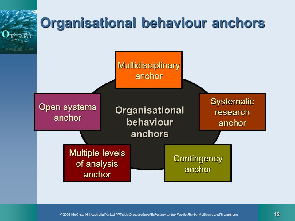 Organisational behaviour anchors