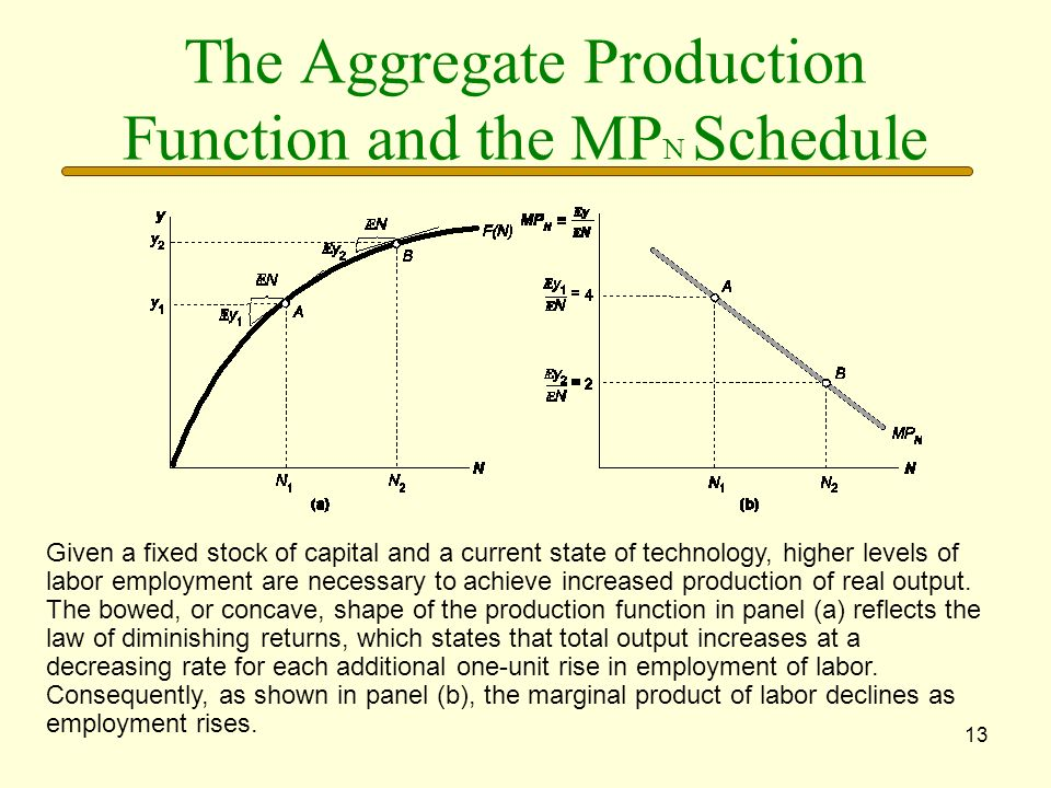 The Aggregate Production Function and the MPN Schedule