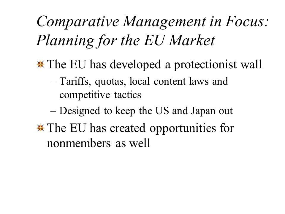 Comparative Management in Focus: Planning for the EU Market