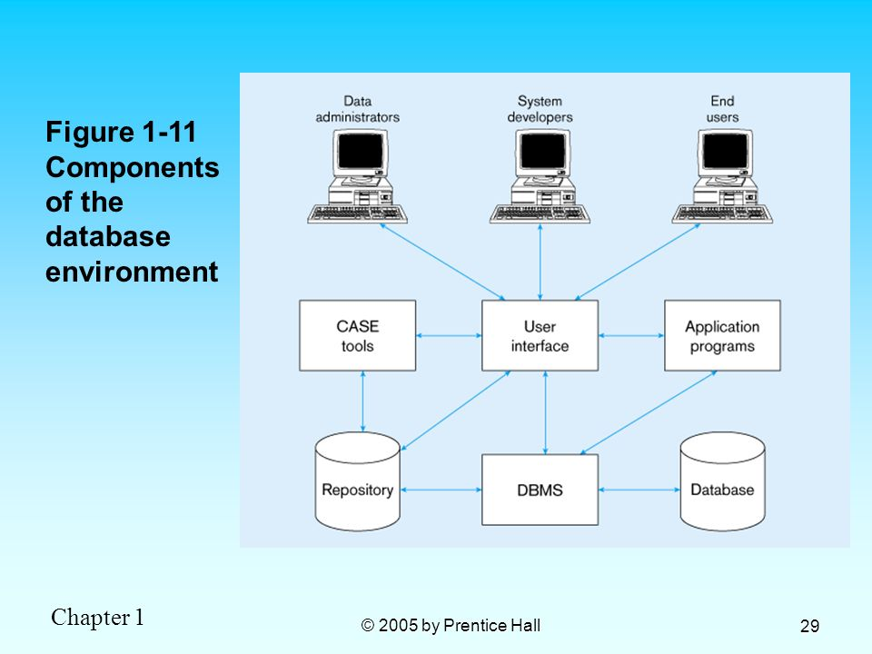 Figure 1-11 Components of the database environment