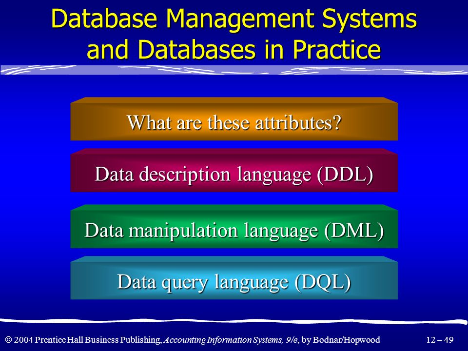 Database Management Systems and Databases in Practice