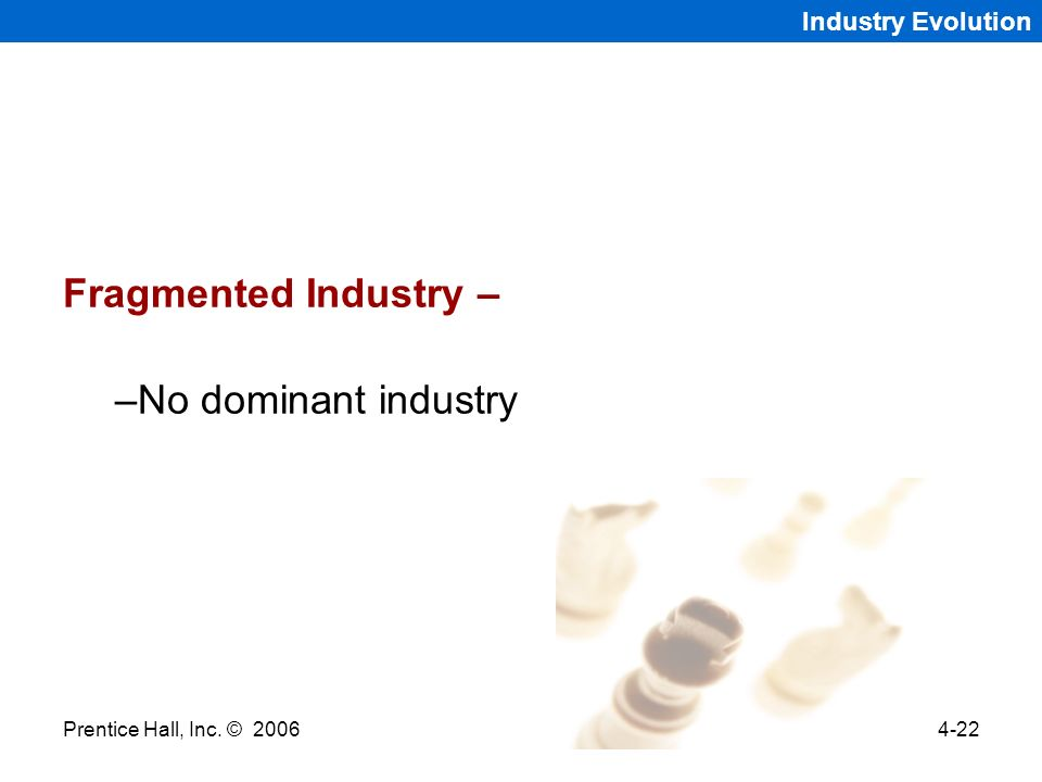 Fragmented Industry – No dominant industry Industry Evolution