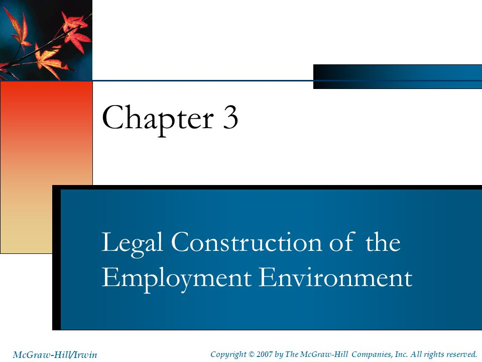 Chapter 3 Legal Construction of the Employment Environment