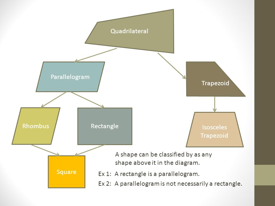 quadrilateral classification tree ppt download
