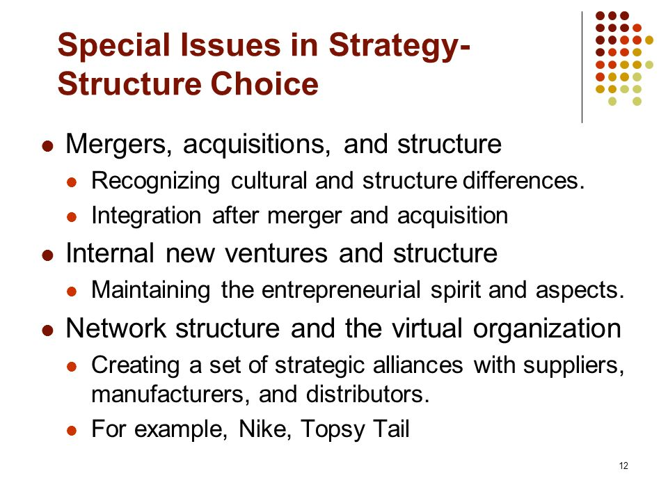 Special Issues in Strategy-Structure Choice