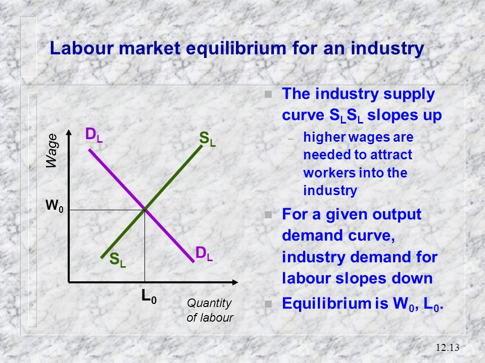 Labour market equilibrium for an industry