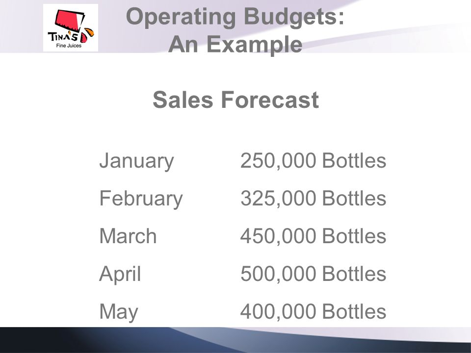Operating Budgets: An Example