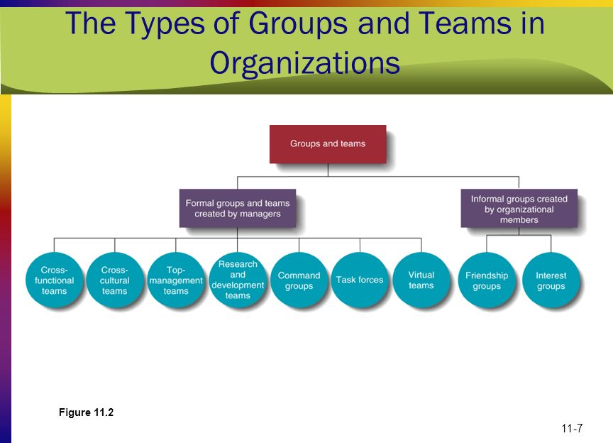 The Types of Groups and Teams in Organizations