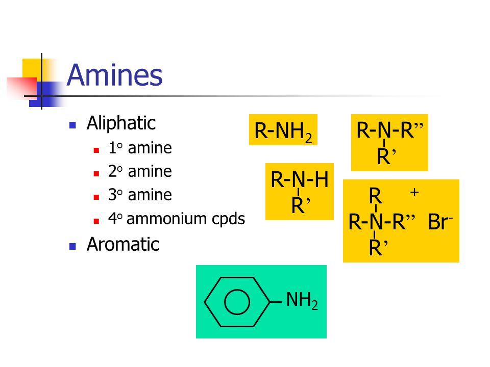 Amines R-NH2 R-N-R R' R-N-H R' R + R-N-R Br- R' Aliphatic Aromatic