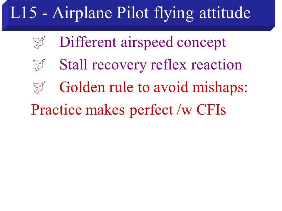 L15 - Airplane Pilot flying attitude