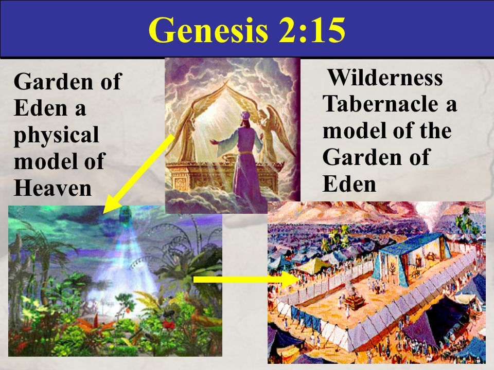 Genesis genesis chapter 2 ppt download for Garden of eden xml design pattern