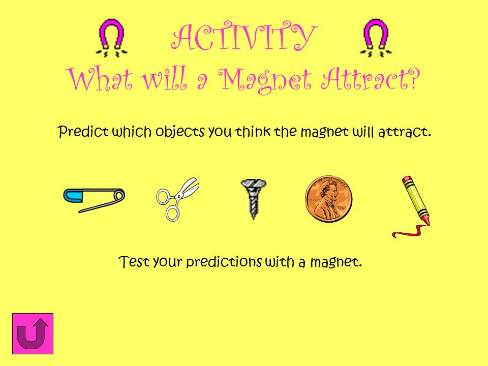 What will a Magnet Attract