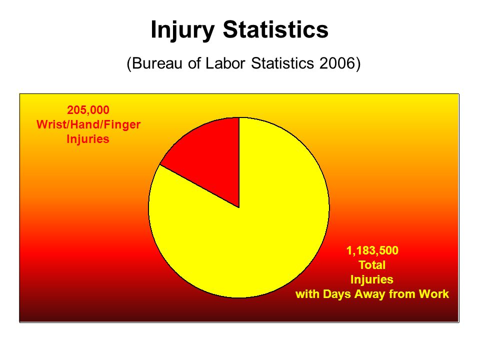 Injury Statistics (Bureau of Labor Statistics 2006)