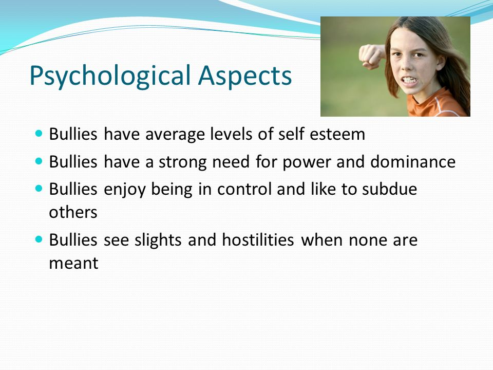 the psychological aspects of bullying essay Bullying essay bullying seems to be one act that crosses all barriers of caste, ethnic origin or sex it is known by different names in different countries and among different people you could examine many aspects of this anti-social behavior in your bullying essay if you are wondering how to make the essay interesting as well as one that.