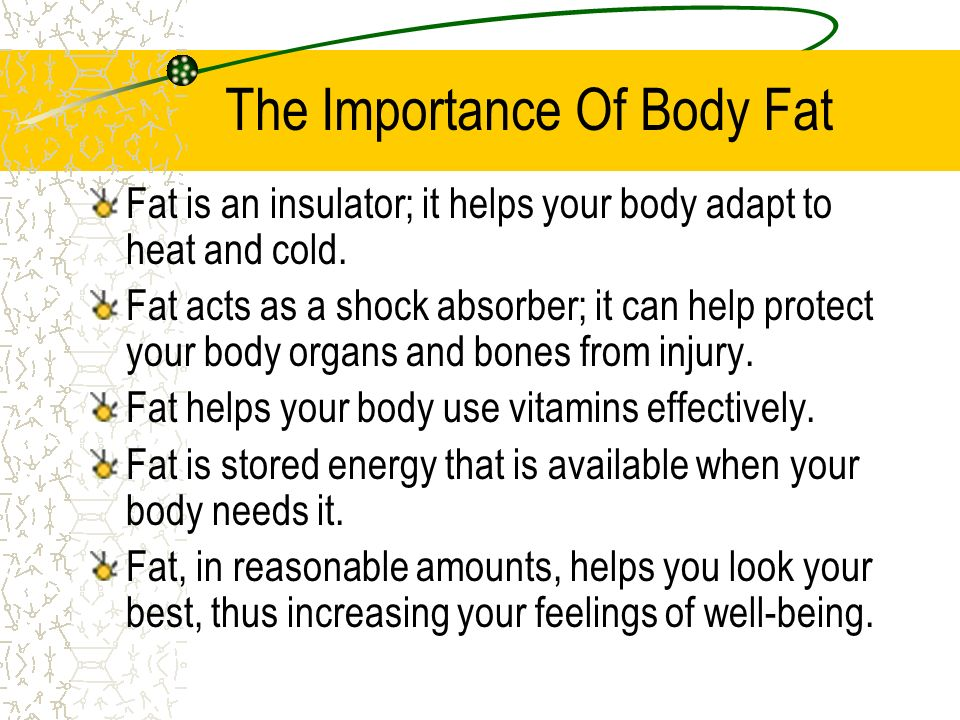 The Importance Of Body Fat