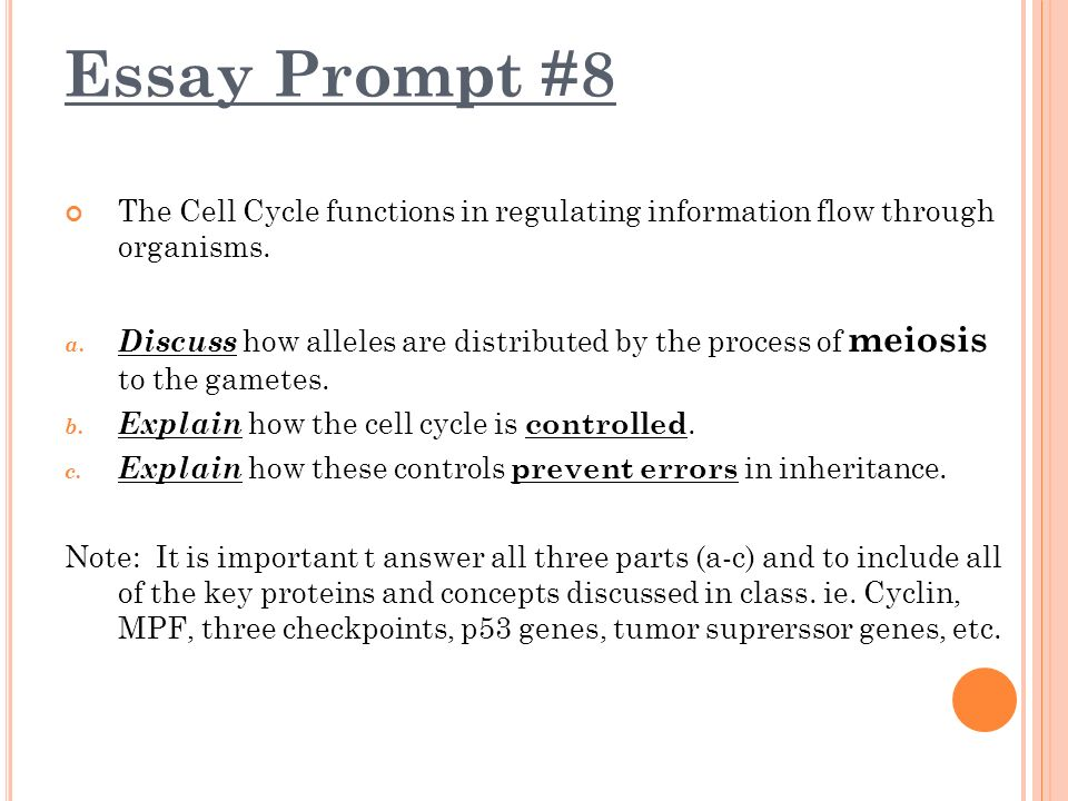ap bio essay 1996 View essay - ap bio - essay 4docx from science 2 at carlinville high school protein large complex molecules are the basic building blocks of all living organisms.