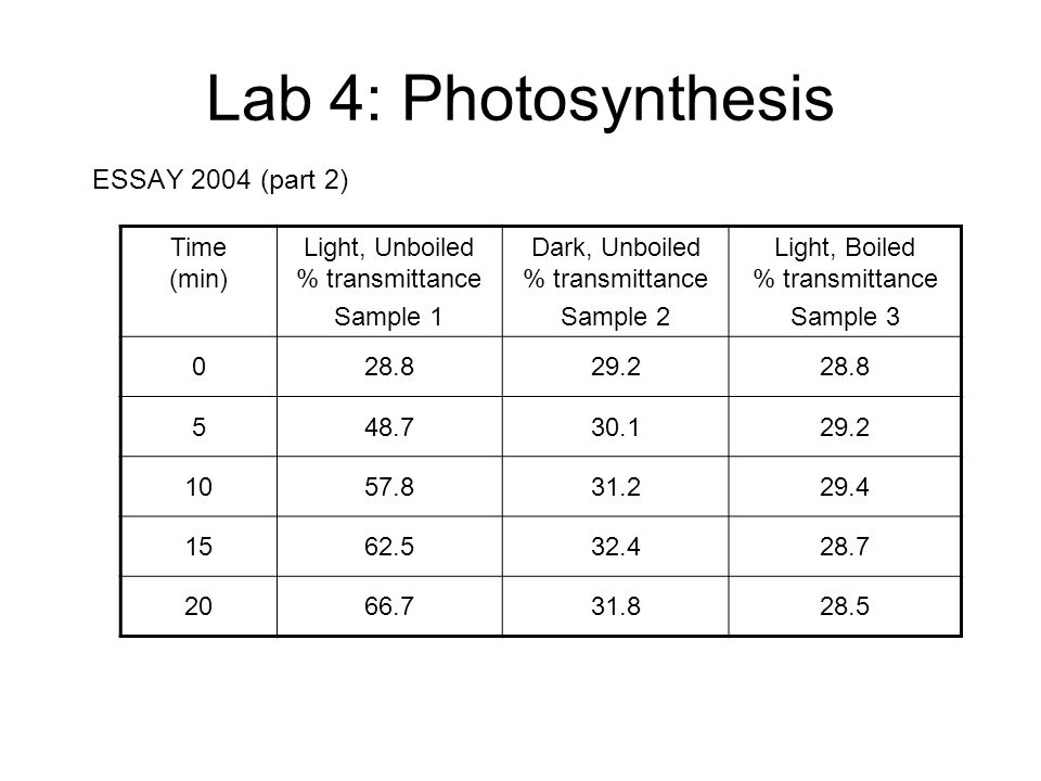 essay on photosynthesis process This paper template helps to learn more about one of the most interesting  processes in the nature feel free to use useful facts and information below.