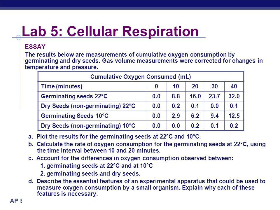 lab cellular respiration ppt video online  lab 5 cellular respiration