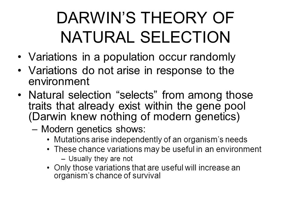 Darwins Theory Of Evolution Ppt Download