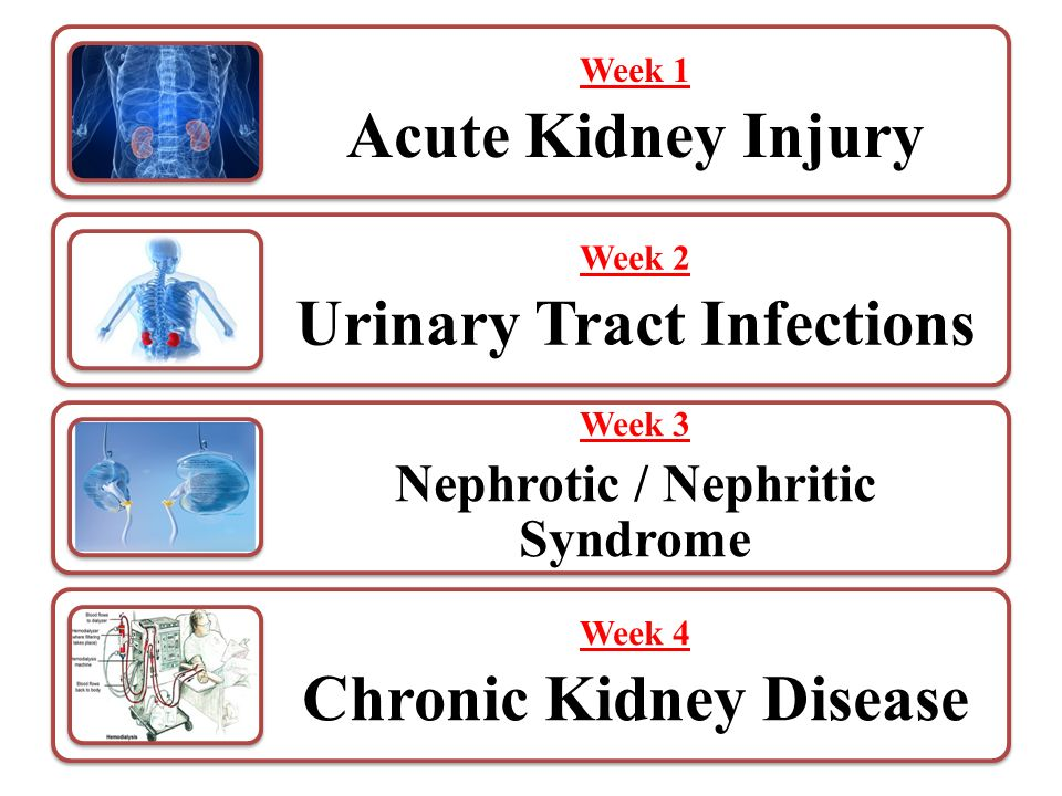 chronic kidney failure research paper Our research tries to find out which patients are at risk of chronic kidney disease,  how their cardiovascular health is affected by this and how screening and.