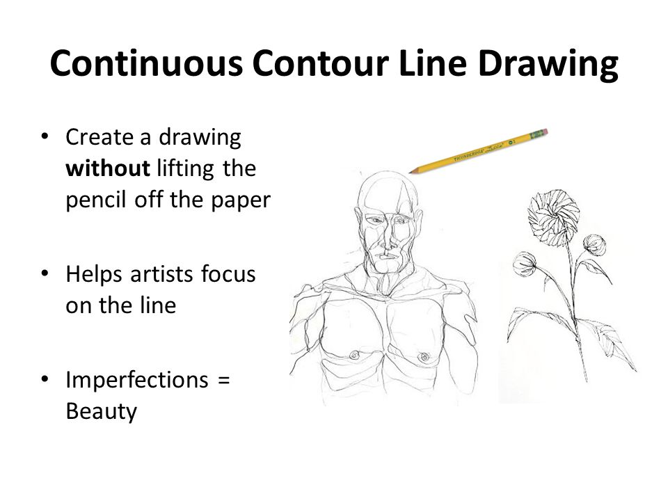 Drawing Lines Exercises : Drawing exercises continuous contour line ppt