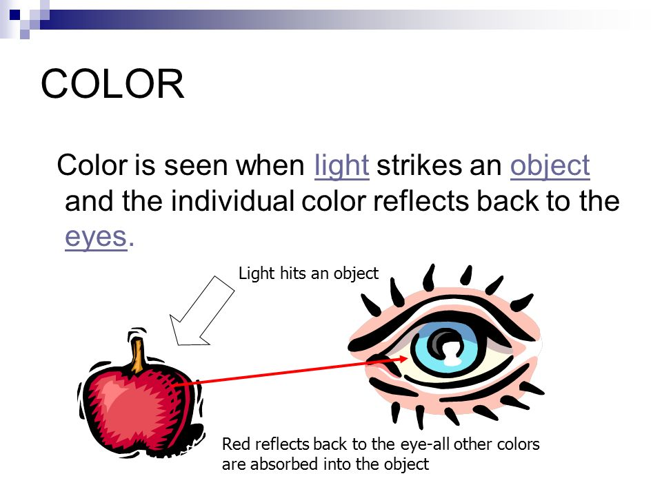 COLOR Color is seen when light strikes an object and the individual color reflects back to the eyes.
