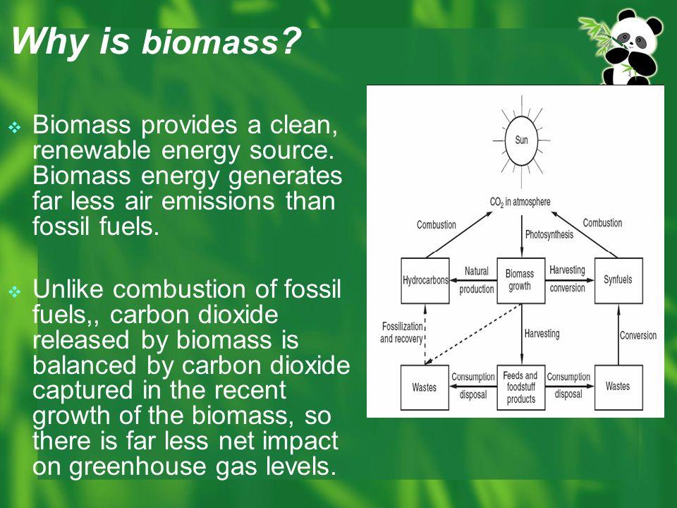 biomass energy essay Biomass, renewable resource, organic - alternative energy resource: biomass.