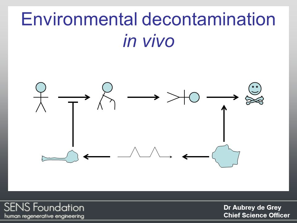 Environmental decontamination