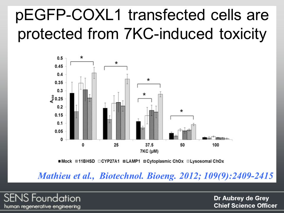pEGFP-COXL1 transfected cells are protected from 7KC-induced toxicity
