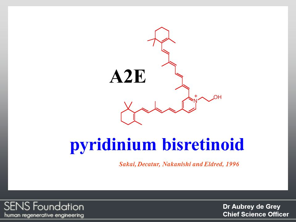 A2E pyridinium bisretinoid Sakai, Decatur, Nakanishi and Eldred, 1996