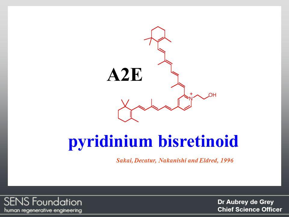 A2E pyridinium bisretinoid Sakai, Decatur, Nakanishi and Eldred, 1996