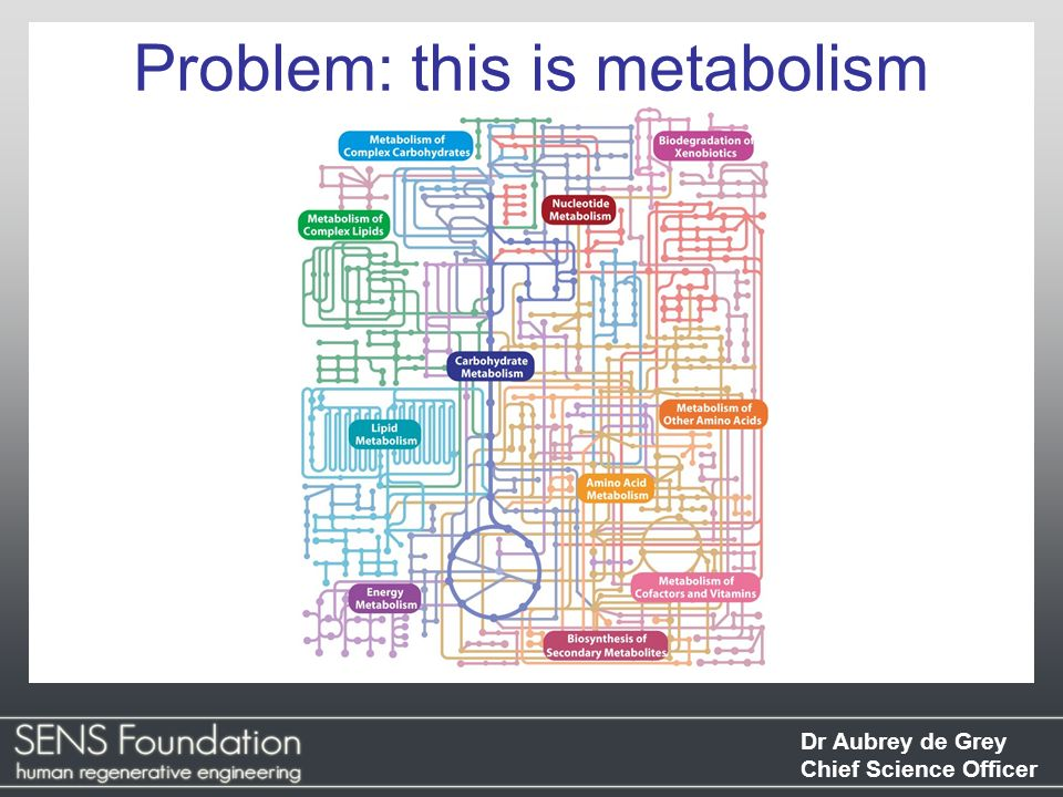 Problem: this is metabolism