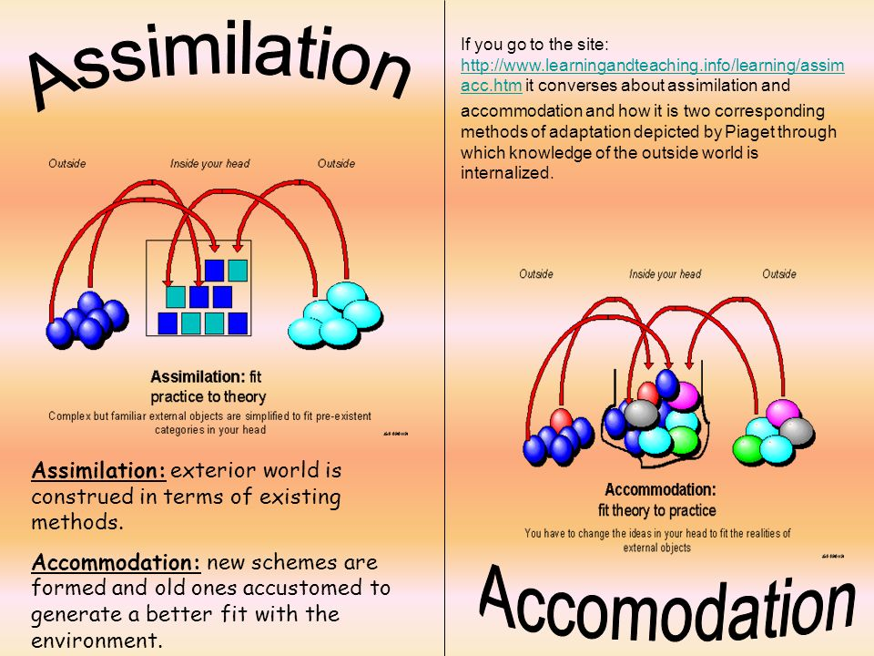 assimilation and accommodation Assimilation meaning, definition, what is assimilation: the process of understanding and using n: learn more.