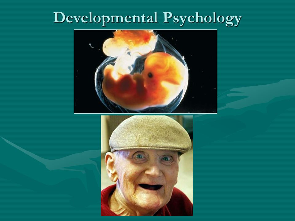 womb to tomb psychology Observing life from womb to tomb: humans depend on each other  fascinated  by the study of family dynamics in psychiatry and psychology.