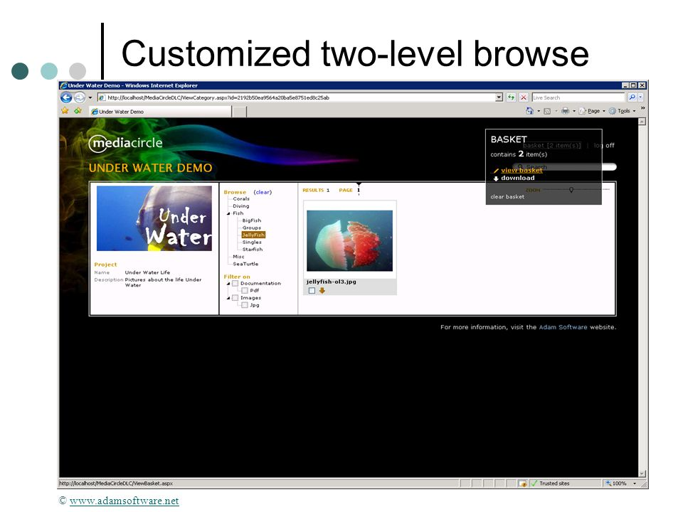 Customized two-level browse