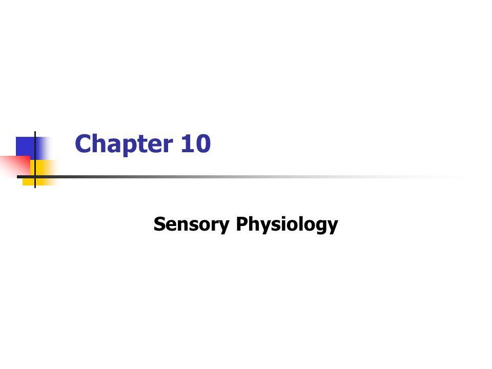 Groß Wesentliche Der Anatomie Und Physiologie 9e Marieb Kapitel 10 ...