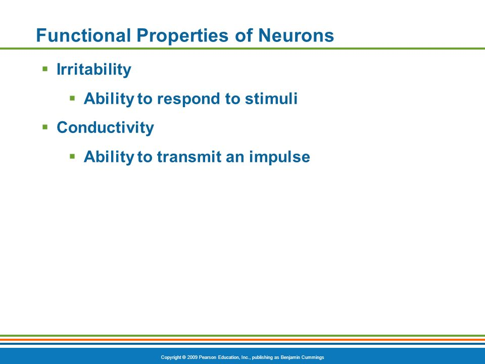 Functional Properties of Neurons