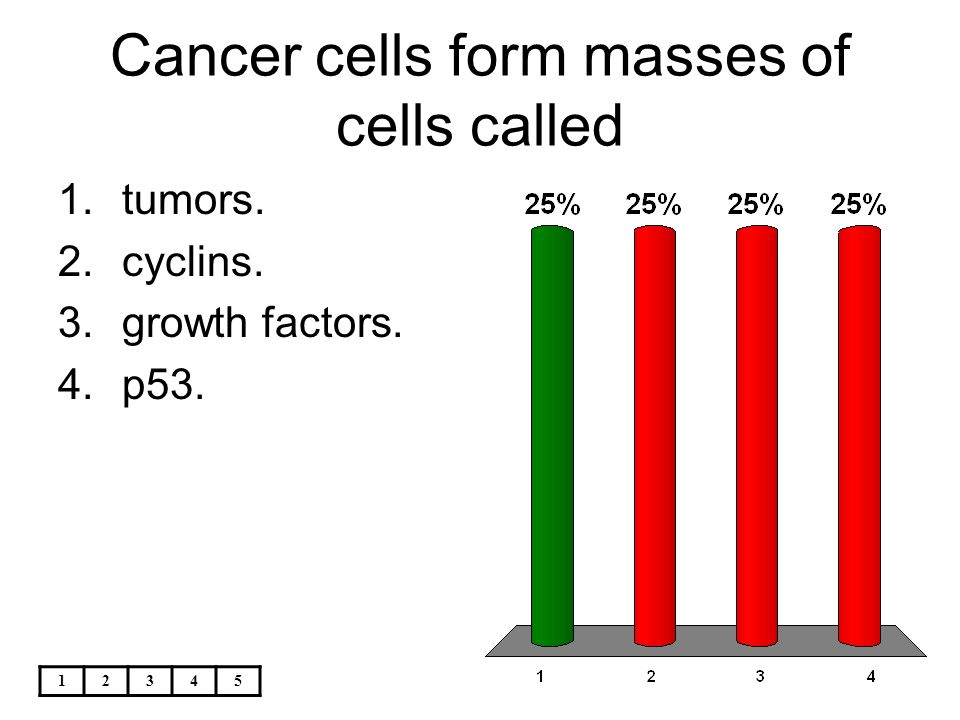As a cell becomes larger, its - ppt download