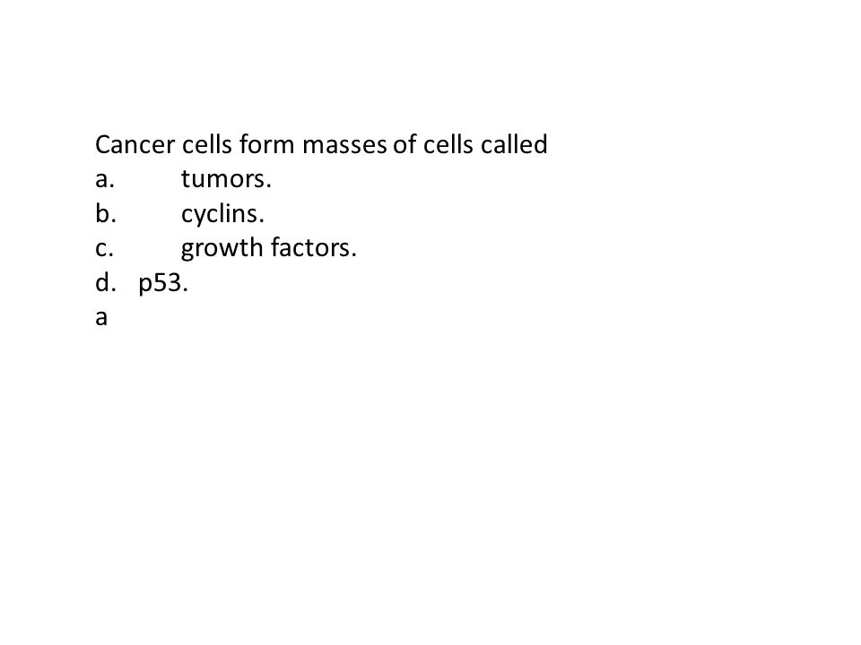 As a cell becomes larger, its - ppt video online download
