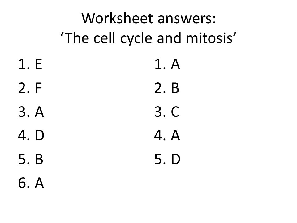 The Cell Cycle Science 9 Lesson 6 ppt download – Cell Cycle and Mitosis Worksheet Answer Key