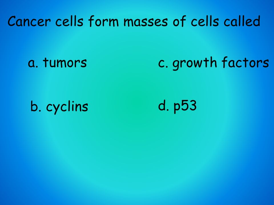 Mitosis Review. - ppt video online download