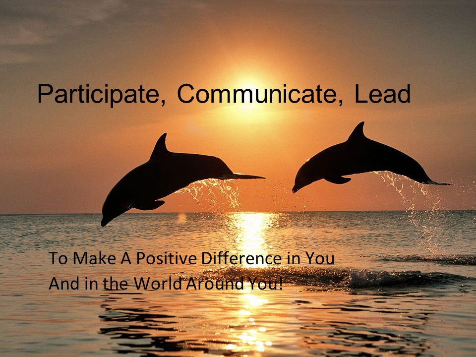 Participate, Communicate, Lead