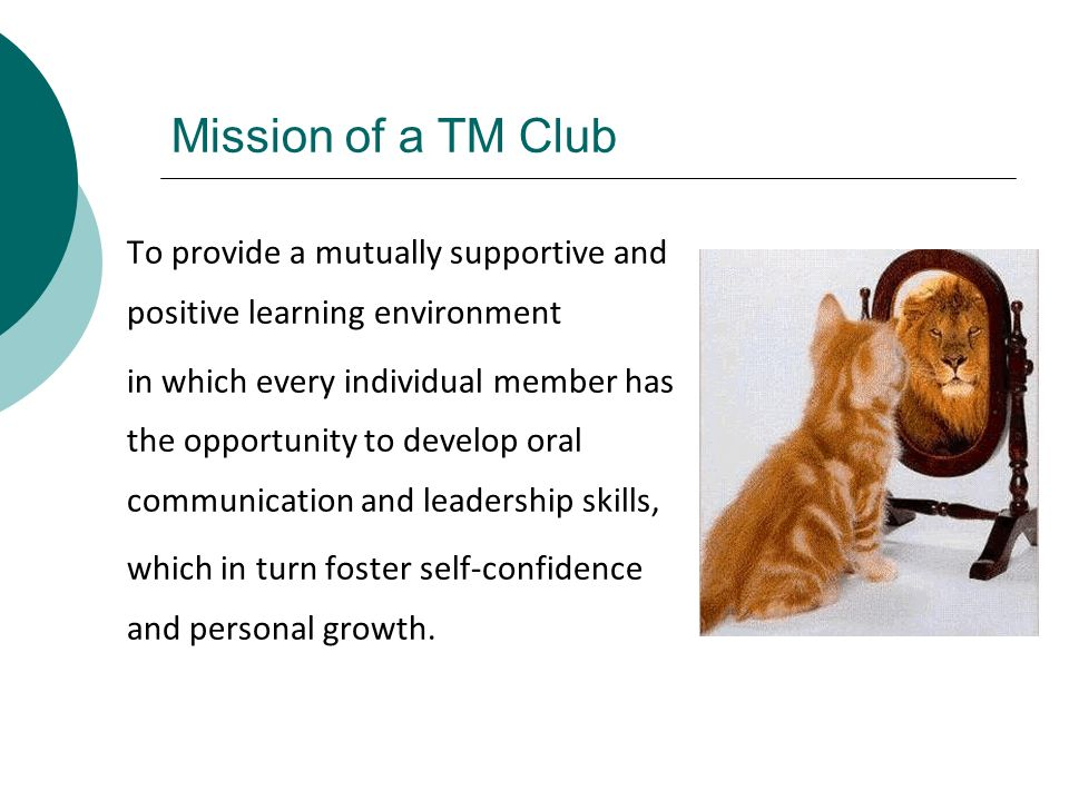 Mission of a TM Club To provide a mutually supportive and positive learning environment.