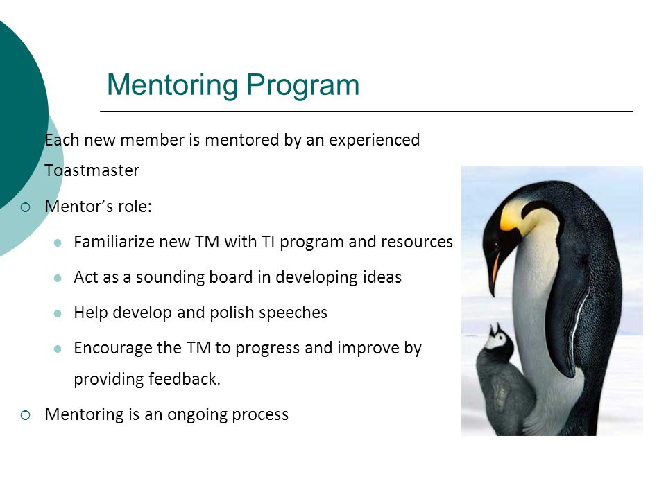 Mentoring Program Each new member is mentored by an experienced Toastmaster. Mentor's role: Familiarize new TM with TI program and resources.
